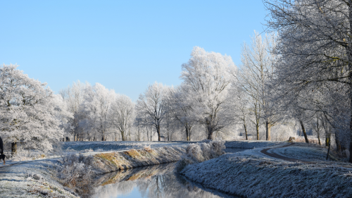 A water course bends through open woodland, all covered in frost under a clear blue sky